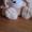 Большая мягкая игрушка #1246052