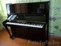 продам пианино Беларусь бу Пинск, Объявление #935784