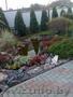 Ландшафтный дизайн вашего земельного участка в г. Иваново,  сбыт многолетних и однолетних цветов по Пинску,  тюльпаны на 8-е Марта